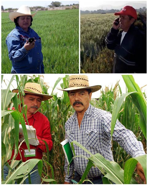Movil MasAgro